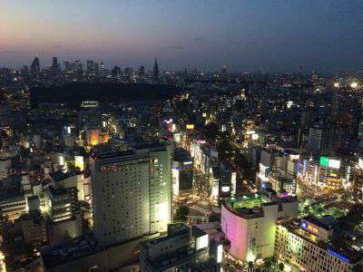 Visit the Cerulean Tower's Bellovisto rooftop bar with a view of Tokyo